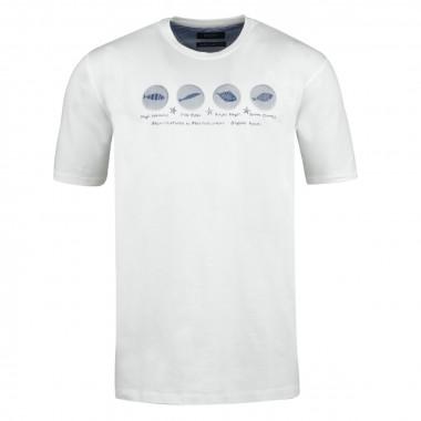 T-shirt col rond blanc: grande taille du 2XL au 6XL